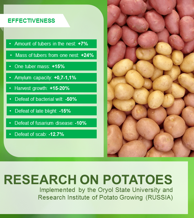 RESEARCH ON POTATOES